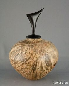 """Résultat de recherche d'images pour """"woodturner denis houle suspended hollow form"""""""