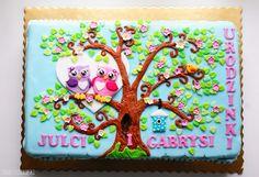 Sekrety Cookietki: Tort z sówkami