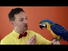 Miro Jaroš - ČAROVNÉ SLOVÍČKA (Oficiálny videoklip) - YouTube Slovak Language, Youtube, Animals, Projects, Animales, Animaux, Animal, Animais, Youtubers