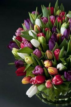 Tid for tulipaner! Tulips Flowers, Pretty Flowers, Fresh Flowers, Spring Flowers, Planting Flowers, Tulpen Arrangements, Floral Arrangements, Amazing Flowers, Beautiful Roses