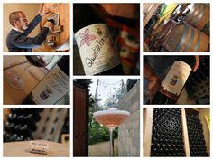The smallest winery in Montalcino - L'Aietta