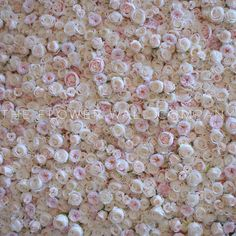 Filled with blush roses and peonies in different shades, this flower wall is multi layered which ensures a realistic effect once it is in place Blush Wedding Reception, Butterfly Party, Blush Flowers, Flower Wall, Peonies, Backdrops, Weddings, Inspiration, Unique Weddings