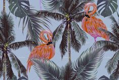 Pink flamingos,palm trees pattern Graphics Beautiful seamless vector floral pattern background with pink flamingos, exotic birds, tropical palm by Tropicana Flamingo Pattern, Tropical Pattern, Watercolor Illustration, Digital Illustration, Leaves Vector, Graphic Patterns, Print Patterns, Exotic Birds, Creative Sketches