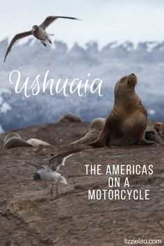 Ushuaia - The Americas on a Motorcycle   Argentina #travel #adventuretravel