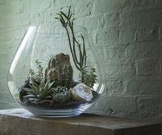 Desert Terrarium with White Geode | Ken Marten | Flickr