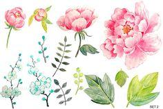 Wedding Watercolor Pink Peony by Corner Croft on @creativemarket