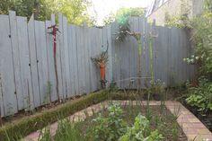 Recycler du bois de coffrage en cloture de séparation de voisinage Outdoor Structures, Gardening, Gardens, Yard Privacy, Green Garden, Plants, Wooden Fence, Lawn And Garden, Yard Landscaping