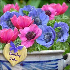 Design: Fastcards www.fastcards.nl - Beterschap kaart met mooie bloemen