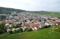 Le village de Verzenay et ses coteaux, classés 100% en Grand Cru dans la Montagne de Reims