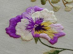 beautiful pansies