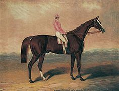 Birdcatcher (1833–1860), or Irish Birdcatcher, was a good Thoroughbred racehorse and a leading sire.  How small is the jockey!!