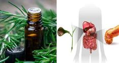 Rosemary oil is among the most beneficial oils you must use, with some uses, such as. Rosemary oil has effective disinfectant attributes that deal with Detox Tea Diet, Detoxify Your Body, Homemade Detox, Best Detox, Best Essential Oils, How To Relieve Stress, Cleanser, Health Tips, Herbs