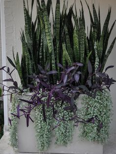 We specialize in garden containers. We grow some of our own unique plant materials and seek out unique plant combinations to create standout focal points for your home. Our designers source unique