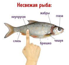 Вкусная рыбка всегда под рукой.