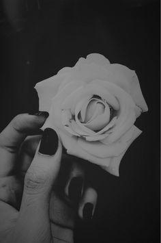 Uma flor branca