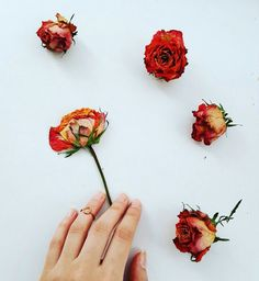 #flowers #hand #gold #nails