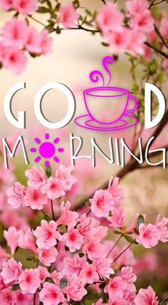 Good Morning Messages: If you like to share Good Morning with your family, relatives, lover & friends. Find out unique collections of Good Morning Msg, best good morning messages for friends in Hindi, morning love messages. Good Morning Images Flowers, Good Morning Nature, Good Morning Beautiful Images, Good Morning Photos, Good Morning Messages, Morning Pictures, Night Flowers, Good Morning Tuesday, Cute Good Morning