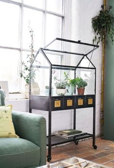 Grey Metal Mini Greenhouse on Wheels Agapanthe Mini Serre, Indoor Water Garden, Indoor Greenhouse, Room With Plants, Parasols, Style Deco, Paludarium, Glass House, Plant Decor