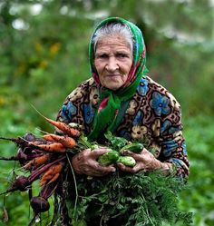 Old woman picking vegetables