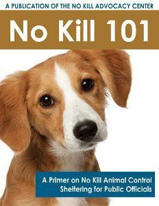 An article on how to stop the mass killing in the shelters. Fb Quote, Stop Animal Cruelty, Feral Cats, Animal Books, Animal Control, Animal Welfare, Four Legged, I Love Dogs, Animal Rescue