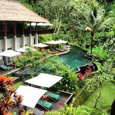 Maya Ubud resort. Sandwiched between two sacred rivers.  Ubud, Bali.