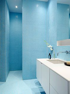 La Shed Architecture / Montréal, Quartier Rosemont. Blue Bathroom TilesCeramic  ...