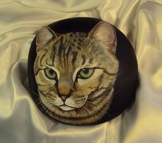 Expertly hand painted Arizona river rocks by Wildlife Artist, Maggie Stoller
