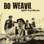 Réseau des médiathèques de l'Albigeois - Split-up blues - Bo Weavil Up, Ecards, Blues, Movie Posters, Movies, Films, Film, Movie, E Cards