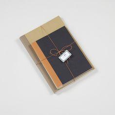 ++ antica cartotenica set of notebooks