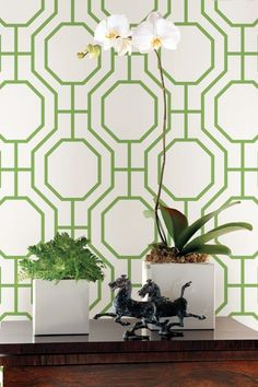 A bold symmetrical trellis wallpaper design with linked octagonal shapes inside other octagons.