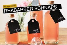 Bild: Rhabarber, Rhabarber Rezept, Rezept für Rhabarber Schnaps, Schnaps selber machen, gefunden auf Partystories.de