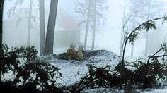 Der Ostfeldzug - Abwehr von Finnland