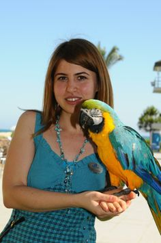 I love birds especially blue..