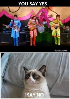"Grumpy sings ""Hello Goodbye"" by the Beatles"