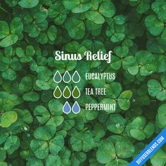 Blend Recipe: 3 drops Eucalyptus, 3 drops Tea Tree, 2 drops Peppermint