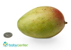 23 weeks: Your baby weighs about as much as a large mango -- just over a pound. (Length: more than 11 inches.) @babycenter #howbigisyourbaby #pregnancy