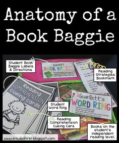 The Anatomy of a Book Baggie | Erica's Ed-Ventures
