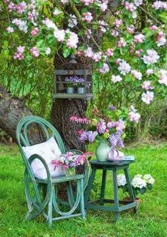Dreamy little garden. Love this garden idea!