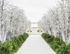 Outdoor Wedding Ceremonies Can you imagine walking down this white, lush Wedding Set Up, Wedding Season, Fall Wedding, Rustic Wedding, Wedding Lounge, Dream Wedding, Wedding Entrance, Wedding Ceremony Decorations, Wedding Themes