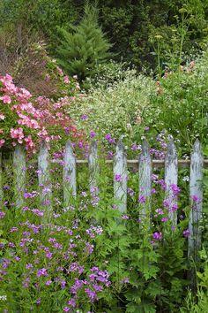 Sharon's Garden by Shauna Sprunger on 500px