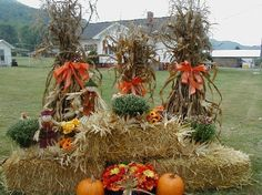 ..got Vince grabbing me some hay bails and corn stalks in 2-3 weeks from work..can NOT wait to do this in front yard