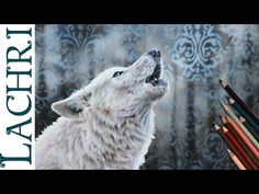 White Wolf colored pencil and airbrush speed drawing - Time Lapse Demo by Lachri - YouTube