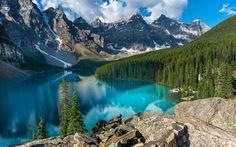 Herunterladen hintergrundbild banff national park, moraine lake, wald, blauer see, sommer, berge, kanada