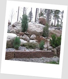 Doorway, Trees To Plant, Villa, Yard, Landscape, Interior Design, Plants, House, Gardening