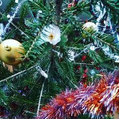 Merry Christmas! / Feliz Navidad! / Joyeux Noël ! / Crăciun fericit!