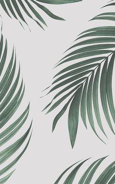 Stil einen atemberaubenden skandinavische Küche Raum mit einer tropischen Feature Tapeten, die das Interieur Ihres Zimmers werden auffrischen. Dieses moderne Blatt-basiertes Design wird eine einzigartige Funktion in Ihrem Raum, schaffen und einen frischen Atem von Luft im Herzen des Hauses vermitteln. Stil einen atemberaubenden Raumes, der mühelos vollständig und wirklich großartige mit dieser schönen Tapete fühlt.