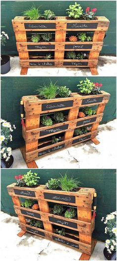 Plans of Woodworking Diy Projects - Creative Beginners Friendly Woodworking DIY Plans At Your Fingertips With Project Ideas, Tips and Tricks Get A Lifetime Of Project Ideas & Inspiration! Pallet Garden Ideas Diy, Pallets Garden, Diy Pallet Projects, Woodworking Projects Diy, Unique Woodworking, Pallet Gardening, Organic Gardening, Woodworking Plans, Palette Projects
