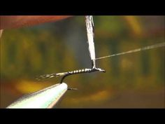 cp's fly fishing and fly tying: New Video Parachute Adams Variant