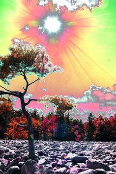 Any colour you like. Psychadelic Art, Psy Art, Trippy Wallpaper, Hippie Art, Glitch Art, Dope Art, Collage Art, Aesthetic Wallpapers, Art Inspo