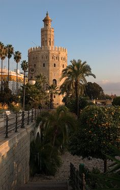 Torre del Oro,  Sevilla  Spain / Travel Europe